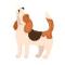 Howlin Beagles